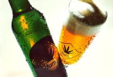 Радости и печали конопляного пива