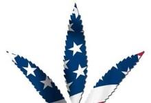 План достижения полной легализации в США