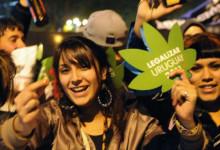 Начало окончания войны с наркотиками: Девять самых важных событий 2013 года