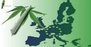 Поддержим общеевропейскую петицию за регулирование конопли!